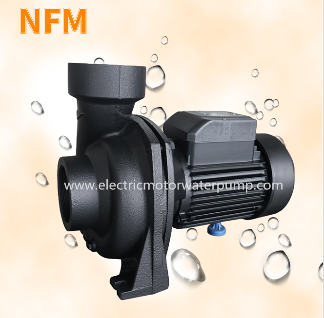 NFM water pump