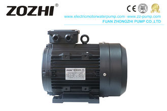 Class F IE1 IP55 1400RPM Hollow Shaft Pump Motor